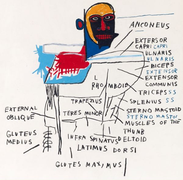 untitled-anatomy-by-jean-michel-basquiat-1982