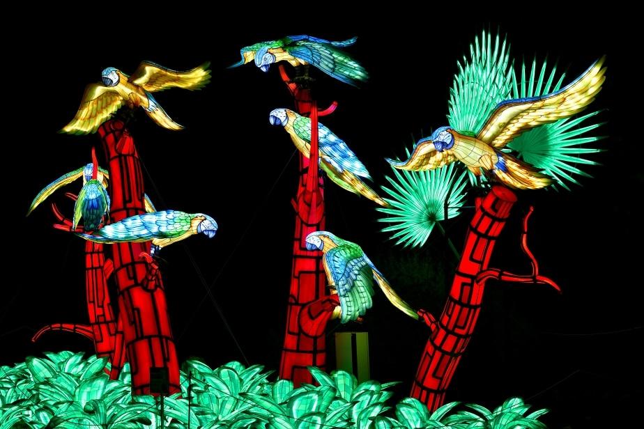 Festival des Lumières au Jardin des Plantes